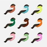 Vector Set Cartoon Birds. Vector Set of Colorful Cartoon Birds, illustration royalty free illustration