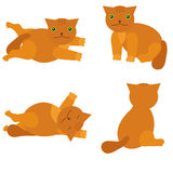 Vector set of cartoon cats Royalty Free Stock Image