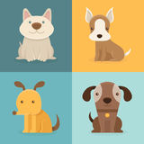 Vector set of cartoon dogs in flat style Royalty Free Stock Photos