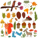 Vector Set of cartoon Forest Animals and autumn elements- stock Royalty Free Stock Photo
