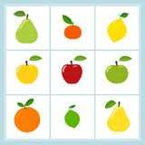 Vector set of cartoon fruit icons isolated on white vector illustration