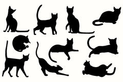 Vector set of cats silhouette. Stock Images