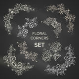 Vector set of chalk ornate floral corners. Spring flowers, leaves, branches, birds and flourishes. White page decorations on blackboard background Royalty Free Stock Photography