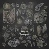 Vector set of chalk Thanksgiving design elements. Royalty Free Stock Image