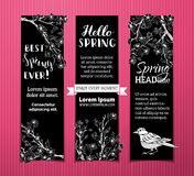 Vector set of chalk vertical spring banners. Stock Photos