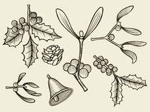 Vector set with Christmas plants. Stock Images