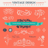 Vector set classic. Сalligraphic design elements book decoratio Royalty Free Stock Photography