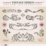 Vector set classic. Calligraphic design Royalty Free Stock Photos