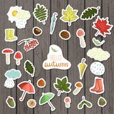 Vector set of colored autumn stickers on shabby wood background stock illustration