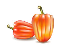 Vector Set of Colored Bulgarian Bell Peppers, Paprika Isolated o Stock Photos