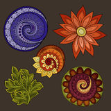 Vector Set of Colored Contour Floral Doodles Stock Photography