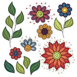 Vector Set of Colored Contour Flowers and Leaves Stock Photos