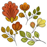 Vector Set of Colored Contour Flowers and Leaves Stock Image