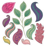 Vector Set of Colored Contour Flowers and Leaves Royalty Free Stock Photo