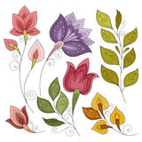 Vector Set of Colored Contour Flowers and Leaves. Floral Design Elements royalty free illustration