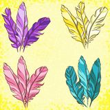 Vector set of colored feathers Stock Photography