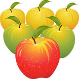 Vector Set of colorful apples Royalty Free Stock Image