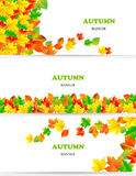 Vector set of colorful autumn leaves banners Stock Image