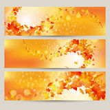 Vector set of colorful autumn leaves banners illustration Royalty Free Stock Image