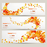 Vector set of colorful autumn leaves banners illustration Royalty Free Stock Images