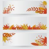Vector set of colorful autumn Royalty Free Stock Photos