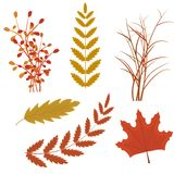 Vector set of colorful autumn Royalty Free Stock Photo