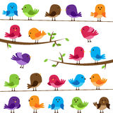 Vector Set of Colorful Cartoon Birds. On Branches and Wires vector illustration