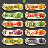 Vector Set of colorful Fruits and Berries Labels Royalty Free Stock Photo