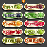 Vector Set of colorful Fruits and Berries Labels. Collection of exsotic fruit logo with lettering title text isolated on black, set of cartoon simple labels Royalty Free Stock Photos