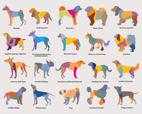 Vector set of colorful mosaic dogs silhouettes-3 Stock Photo