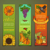 Vector set of colourful Thanksgiving vertical banners. Stock Image