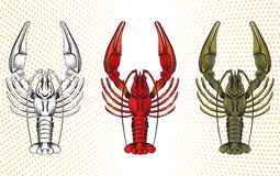 Vector set of crawfish. Vector set of colorful crawfish Stock Photography
