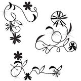 Vector set of curls Royalty Free Stock Photo