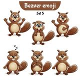 Vector set of cute beaver characters. Set 5. Set kit collection sticker emoji emoticon emotion vector isolated illustration happy character sweet, cute beaver Stock Image