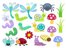 Vector Set of Cute Cartoon Bugs. Vector illustration isolated on white background Stock Image