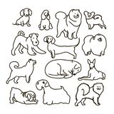Vector set with cute cartoon dos of different breeds stock illustration