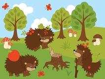 Vector Set of Cute Cartoon Hedgehogs. Mushrooms, trees, amanita, butterflies, berries, sky and clouds. Vector hedgehog. Hedgehogs vector illustration Stock Image