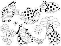 Vector Set of Cute Cartoon Ladybugs and Flowers. Vector set of black and white cute cartoon ladybugs, flowers and butterflies. Vector cute ladybirds.  Ladybugs Royalty Free Stock Photos