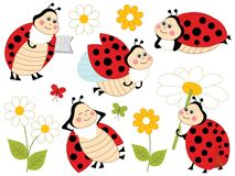 Vector Set of Cute Cartoon Ladybugs and Flowers. Vector set of cute  cartoon ladybugs, flowers and butterflies. Vector cute ladybirds. Vector ladybug. Ladybugs Stock Photography