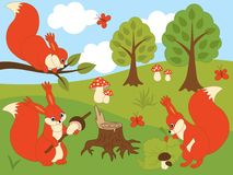 Vector Set of Cute Cartoon Squirrels. Trees, mushrooms, butterflies, sky and clouds. Vector squirrel. Squirrels vector illustration Stock Images
