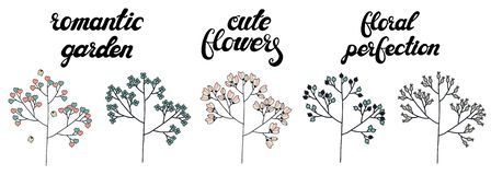 Vector set of cute doodle trees isolated on white background. vector illustration