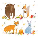 Vector set of cute forest animals: fox, bear, rabbit and squirrel. Autumn leaves, pumpkin, berries. Vector set of cute forest animals: fox, bear, rabbit and Royalty Free Stock Photography