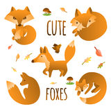 Vector set of cute foxes, autumn leaves and mushrooms. Hand draw fox for children's books. Stock Image