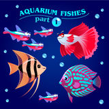 Vector set of cute freshwater aquarium fishes. Part 1. Royalty Free Stock Photography