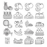 Vector set of  cute  fruit icon isolated on white background. Royalty Free Stock Images