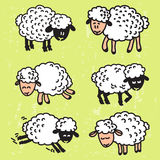 Vector set with cute sheep. EPS10. Vector illustration with cute  cartoon sheep Royalty Free Stock Images