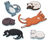 Vector set of cute sleeping cats. Lazy sleepy lying kitties collection different poses and colors Stock Photos
