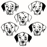 Vector set of  dalmatian's face. Hand-drawn  illustration, Royalty Free Stock Photography