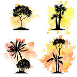 Vector set of deciduous trees Royalty Free Stock Image