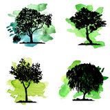 Vector set of deciduous trees Royalty Free Stock Photo